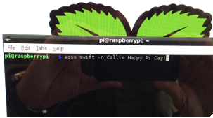 Swift returns sucesfully on the command line